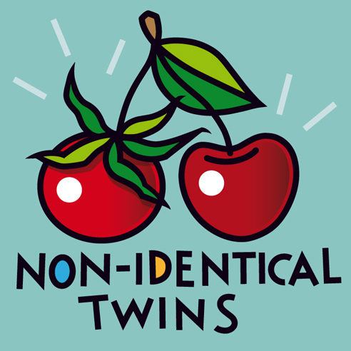 "<b>NON-IDENTICAL TWINS</b> - Image 25 x 25 cm, paper 31 x 31 cm  - ARTPrint on paper, limited edition (25) - € 99,-  <a style=""color: red; text-decoration: none"" href=""mailto:jpgpmarsman@onsbrabantnet.nl"">BESTEL</a>"